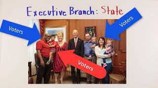 The Executive Branch at the State Level