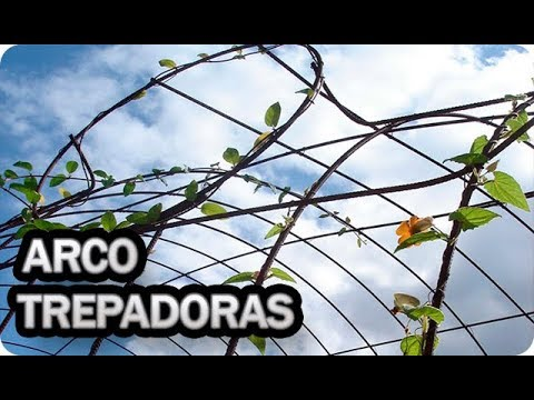 Como Hacer Un Arco Para Cultivar Trepadoras || La Huertina De Toni