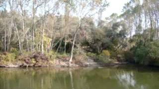 preview picture of video 'Benno Simma MMVIII1026 Along The Mincio River'