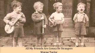 All My Friends Are Gonna Be Strangers   Wayne Taylor