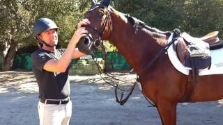 """How to Say """"No You Can't Ride My Horse"""""""
