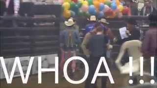 BULL POKER FAIL ! Hoof & Holler Rodeo  Everclear When It All Goes Wrong  Lyrics
