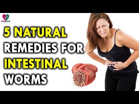 , title : '5 Natural Remedies For Intestinal Worms - Stomach Issues - Stomach Problems - Intestinal Worms