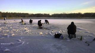 Рыбалка дон и северский донец чугуев
