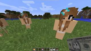 Minecraft Sex Mod 4
