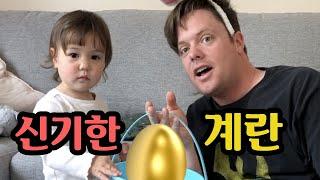 Easter Egg Hunt for a Baby! 아빠가 토끼로 변했어요! 🧐아기랑 하는 부활절 계란 찾기 게임