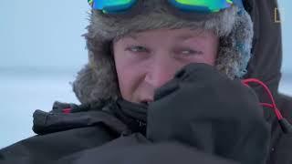 Male Polar Bear Fight Club - Ep. 2 | Wildlife: The Big Freeze thumbnail