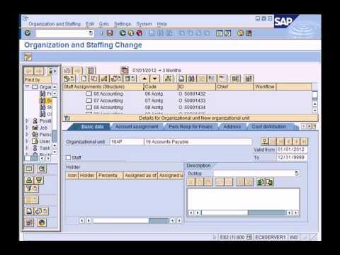 SAP HCM (HR) Overview - YouTube