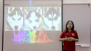 [WSI] I2.2 Quỳnh Anh - Presentation level 2