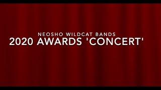 2019-2020 Instrumental Awards