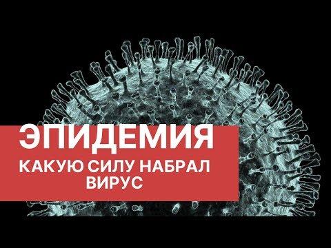 Подпишитесь на канал РБК: https://www.youtube.com/user/tvrbcnews?sub_confirmation=1 По данным ВОЗ, пока речь идет об эпидемии коронави...