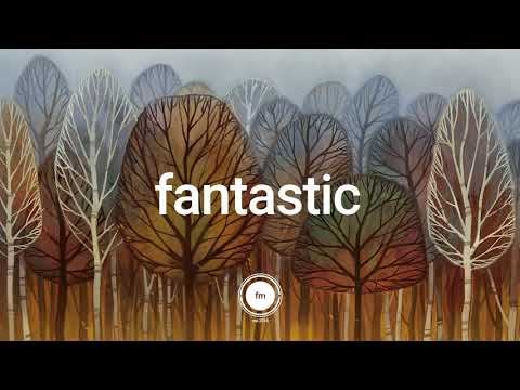 Autumn Leaves   | Lofi Acoustic