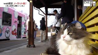 Vol.43「にゃん旅鉄道」仕事モード全開にゃ!