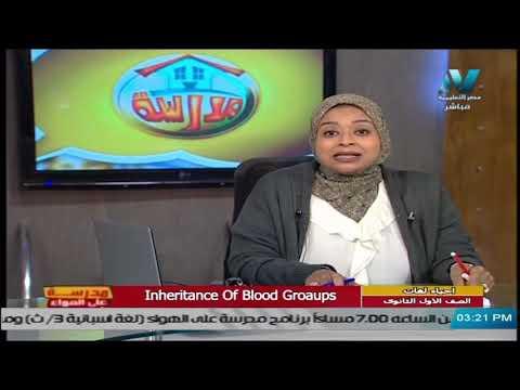 أحياء لغات للصف الأول الثانوي 2021 (ترم 2 ) الحلقة 4 – Inheritance of Blood Groups