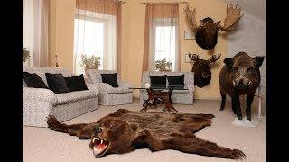 Дикие животные в квартире!!!