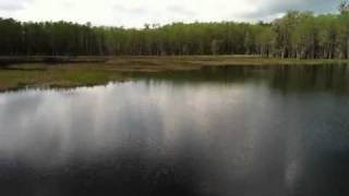 preview picture of video 'video1.mov: Pine Log State Forest'