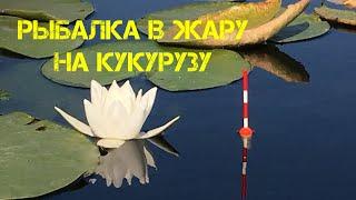 Орловское озеро кировской области рыбалка