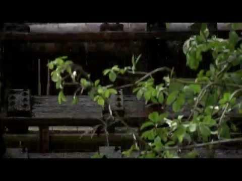 Dieses Video zeigt die Besonderheit des Paderquellgebietes