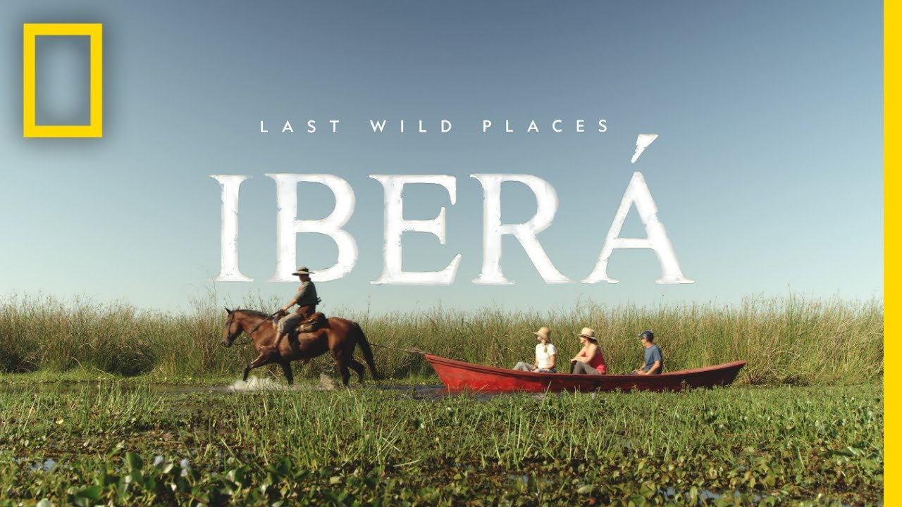 Last Wild Places: Iberá | National Geographic thumbnail
