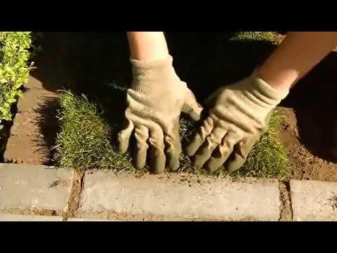 Укладка газона