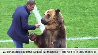 Медведь Тима открыл матч третьего дивизиона российского футбола