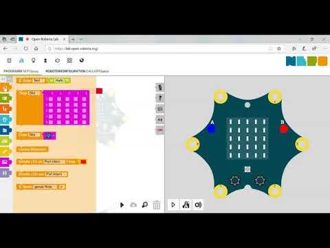 Calliope mini - LED Raster programmieren