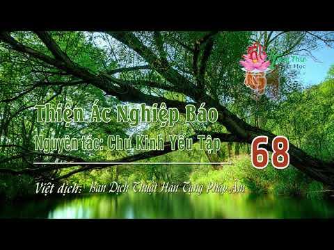 Thiện Ác Nghiệp Báo -68