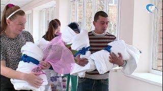 Из областной детской больницы выписали тройняшек, родившихся в Холмском районе месяц назад