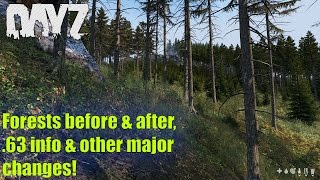 DayZ Standalone: Forests Before & After, .63 INFO / Other major changes (UPCOMING UPDATES)