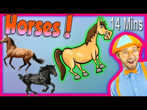 horses for children learn farm animals for kids the horse so