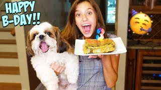 I MADE A BIRTHDAY CAKE FOR MY DOG!! COOKING WITH JAYLA