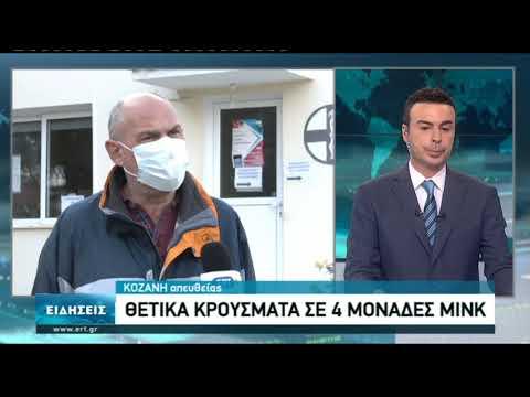 Μολυσμένες με κορονοϊό τέσσερις φάρμες με μινκ στη δυτική Μακεδονία   18/11/2020   ΕΡΤ