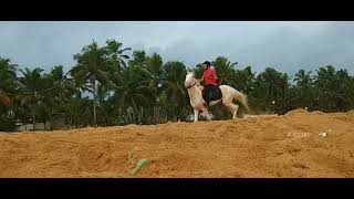 Bright Horse Riders Trivandrum Kerala