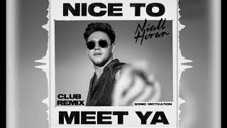 Niall Horan   Nice To Meet Ya (Club Remix)