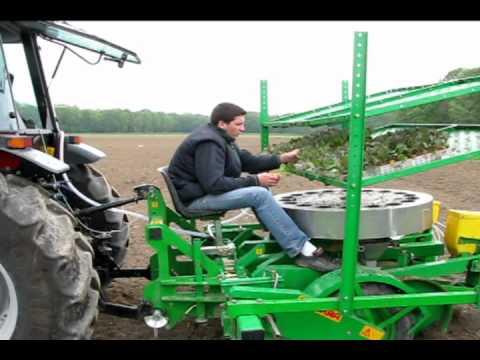 Localisation des désherbants en chou à la plantation et au binage par PLANETE Légumes.