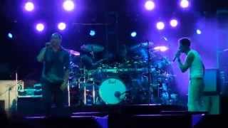 311 - Misdirected Hostility (Mandalay Bay Las Vegas 7/4/15