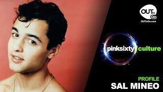 SAL MINEO | Pinksixty Culture