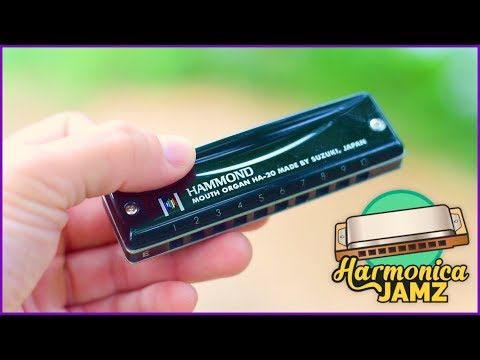 Suzuki Hammond Harmonica Review: Black & Beautiful