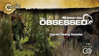 Episode 1 - The Obsessed - Cypress Swamp Osceolas
