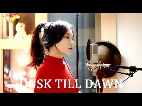 ZAYN - Dusk Till Dawn ft. Sia ( cover by J.Fla ) (видео)