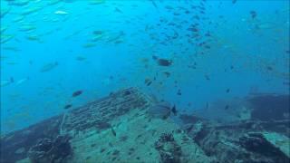 Dykning Ved Similan Islands Dag 4