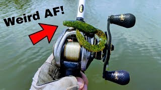 This WEIRD Bass Fishing Lure SAVED THE DAY!!! (WTF is it???)