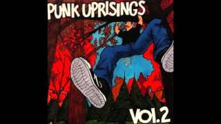 """Brand New Day"" by Disenchanted (Punk Uprisings Vol. 2)"