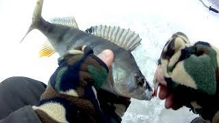 Кубенское озеро рыбалка зимой