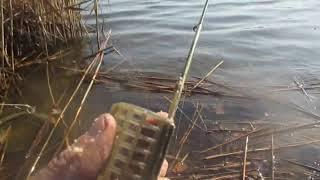 Удачливого или удачного любителя рыбной ловли