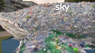 Plastic whale goes on a journey for #OceanRescue