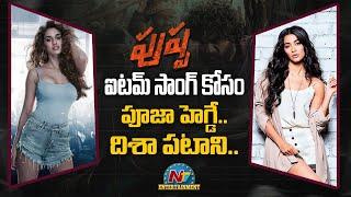 పుష్ప ఐటమ్ సాంగ్ కోసం పూజా హెగ్డే , దిశా పటాని   NTV Entertainment