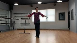 Video 8 from Julia – Ballroom Exercise
