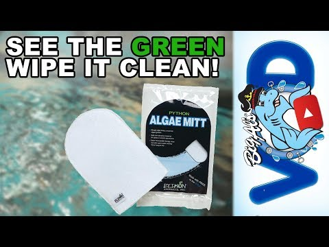 See the Green, Wipe it Clean! (Video)