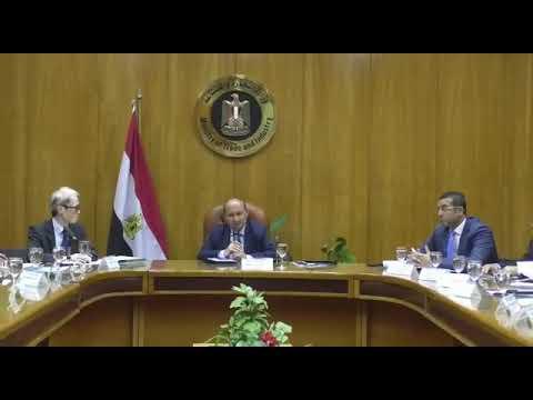 اجتماع الوزير/ عمرو نصار مع 50 من كبريات الشركات اليابانية